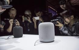 Apple cho đặt trước HomePod vào thứ Sáu 26/1, chính thức lên kệ vào ngày 9/2
