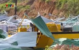 Cơ quan phát triển Liên Hợp Quốc hỗ trợ sửa nhà cho người dân vùng bão số 12