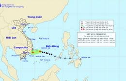 Bão số 1 suy yếu gây mưa cho các tỉnh, thành từ Đà Nẵng đến Bình Thuận