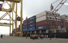 Đà Nẵng đón tấn hàng đầu tiên qua cảng trong năm mới 2018