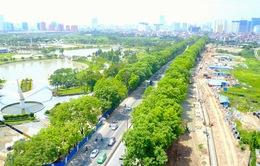 Xâm hại cây xanh có thể bị phạt đến 30 triệu đồng