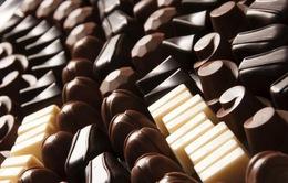 Chocolate có thể biến mất vào năm 2050