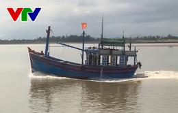 Ninh Thuận cho phép tàu thuyền ra khơi trở lại