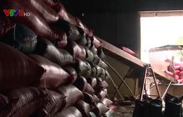 Gia Lai: Cà phê rớt giá, nông dân trữ hàng