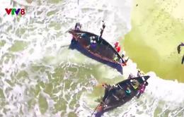 Ngư dân Thừa Thiên - Huế được mùa lộc biển