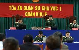 Điều tra bổ sung vụ phá rừng pơmu ở Quảng Nam