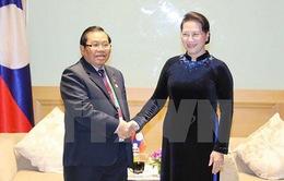 Lào ủng hộ hết mình để Việt Nam tổ chức thành công hội nghị APPF-26