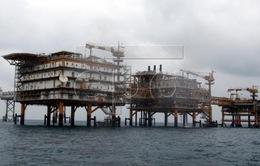 Mỹ cấm khoan thăm dò dầu khí ngoài khơi bang Florida