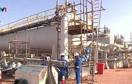 Năm 2018, sản lượng dầu thô của Mỹ có thể đạt mức kỷ lục