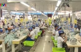 Cắt giảm 50% điều kiện đầu tư kinh doanh: Động lực mới cho tăng trưởng kinh tế
