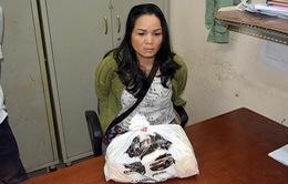Tây Ninh bắt giữ đối tượng vận chuyển ma túy