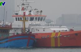 Đà Nẵng: Lai dắt tàu cùng 6 thuyền viên bị nạn trên biển về đất liền an toàn