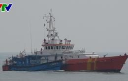 Cứu nạn thành công 11 thuyền viên Đà Nẵng gặp nạn trên biển