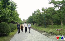 Du lịch Việt Nam sôi động ngày đầu năm