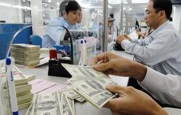 Dự trữ ngoại hối Việt Nam vượt mức 53 tỷ USD