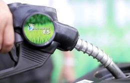 Xăng E5 được đảm bảo chất lượng khi ra thị trường