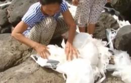 Túi lạ dạt vào bờ biển, dân đảo mang về dùng