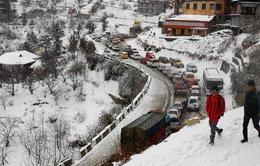 Giá lạnh bất thường tiếp tục hoành hành tại miền Bắc Ấn Độ