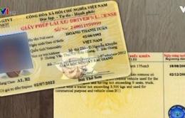 Từ hôm nay, cấp đổi giấy phép lái xe qua mạng