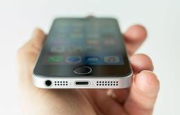iPhone SE 2 sẽ mạnh như iPhone 7 và hỗ trợ sạc không dây