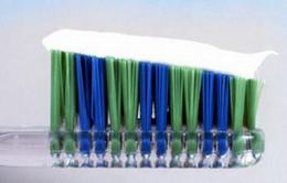 Chất trong kem đánh răng có thể chữa được sốt rét