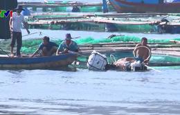 VASEP công bố Sách Trắng về chống khai thác thủy sản bất hợp pháp