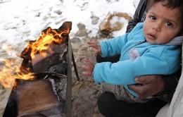 Liên Hợp Quốc cảnh báo mùa Đông giá lạnh đe dọa người dân Syria