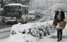 Tuyết rơi dày đặc ảnh hưởng tới người dân Tokyo, Nhật Bản
