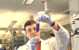 Chống siêu vi khuẩn kháng thuốc kháng sinh