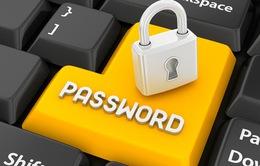 Mật khẩu thư điện tử của bạn có bị lộ hay không?