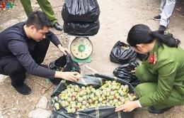 Quảng Ninh: Bắt đối tượng tàng trữ gần 100kg pháo trong nhà