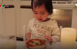 Em bé 2 tuổi dạy làm Pizza qua Youtube