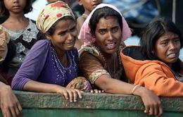 Bangladesh hoãn tiến trình hồi hương người tị nạn Rohingya về Myanmar