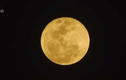 Người dân Thái Lan thích thú ngắm siêu trăng
