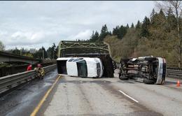 Mỹ: 6 người thiệt mạng vì tai nạn ô tô đi ngược đường