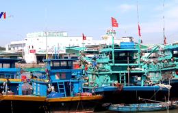 Bình Thuận cấm tàu thuyền ra khơi để phòng tránh bão
