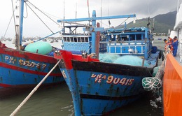 Cứu 11 thuyền viên tàu cá Đà Nẵng gặp nạn trên biển