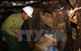 Lâm Đồng: Triệt phá hầm khai thác thiếc trái phép dài hàng trăm mét