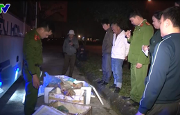 Hà Tĩnh: Thu giữ hơn 200kg thịt động vật bốc mùi và 1,45 tấn mì chính giả