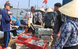 """Không để EU rút """"thẻ đỏ"""" với thủy sản Việt Nam"""