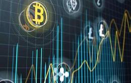 Giới đầu tư tiền ảo mất 50 tỷ USD trong 5 ngày