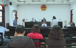 Xét xử vụ tàng trữ rùa biển tại Nha Trang
