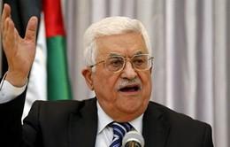 Palestine từ chối vai trò trung gian hòa giải của Mỹ