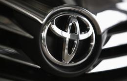 Toyota tiếp tục thu hồi xe tại Mỹ vì lỗi túi khí