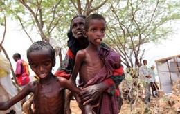 Hơn 5.000 trẻ em thương vong do xung đột vũ trang tại Yemen