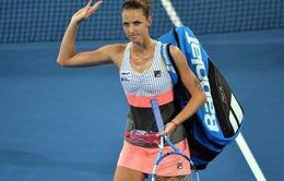Karolina Pliskova trở thành cựu vô địch tại Brisbane International