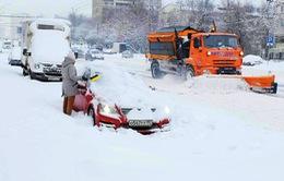Tuyết rơi dày ở Moscow, Nga