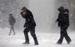 Một nửa nước Mỹ sắp chìm trong bão tuyết