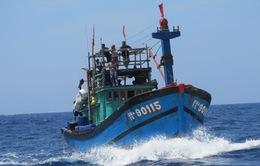 Ngư dân xử lý rủi ro trên biển: Vẫn còn nhiều khoảng trống