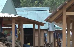Người dân làng tái định cư không có gỗ để hoàn thiện nhà ở